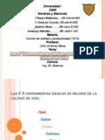 las5sherramientasbsicasdelamejoradecalidaddevida-120831224715-phpapp01