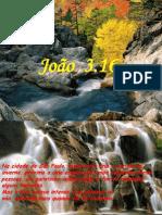 JOÃO-3.162