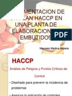 Implementacion de Un Plan Haccp en Una Planta (1)
