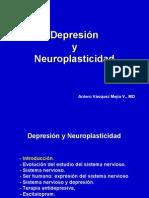 Depresión y neuroplasticidad