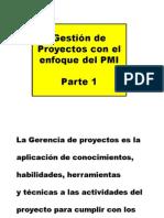 3 Enfoque PMI 1