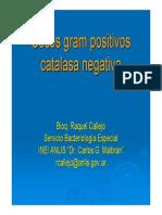Cocos+Catalasanegativa (1)