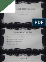 Ancilostosomose