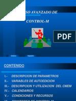 Control M Curso