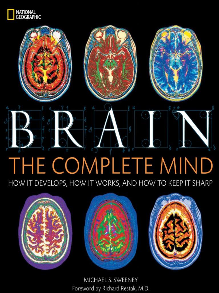 Human Brain | Brain | Mind