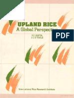 Upland Rice _Global Perspective by IRRI (P.C Gupta & JC OTOOLE