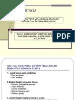 Diagram & Rumus Bunga