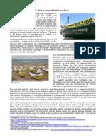 Alimentació sostenible (V).  Pesca sostenible (II)