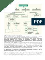Biomoleculas Glucidos Lipidos