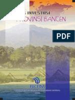 Peluang Investasi Provinse Banten 2011