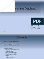 Security of the Database