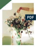 Carton 6 février Bouquet_AmelieLucie
