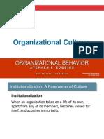 11 -Organization Culture organisational behaviour
