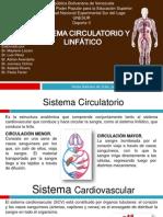 Presentacion Sistema Circulatorio