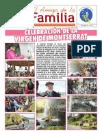 EL AMIGO DE LA FAMILIA domingo 19 enero 2014