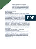 términos de monografíaFINAL