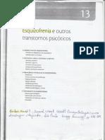 Cap. 13 - Esquizofrenia e outros transtornos psicóticos