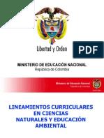 Presentación de Lineamientos y Estándares Básicos de compete.ppt