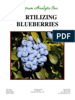 Fertilizing Blueberries