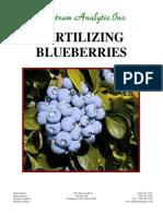 Fertilizing Blueberries