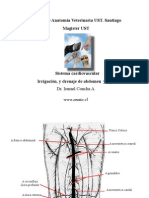 Irr,dren,In abd pelvis 003 -for PDF.pdf