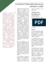 TRADUCCIÓN DE ARTÍCULO DE REVISTA DE AUDITORÍA