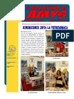 Il Bollettino Di Amys Nr. 2-2013