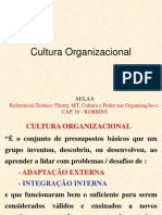 Aula 08 Cultura Organizacional