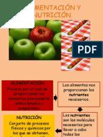 alimentacinynutricin