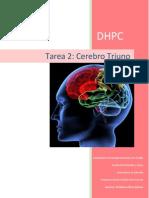 tarea 2 - cerebro triuno