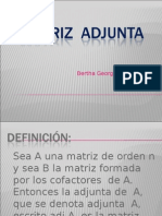 10 MATRIZ  ADJUNTA
