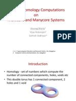 Efficient Homology Computations (1)
