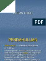 Fluids 2007