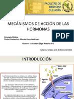 Mecanismos de Accion de Las Hormonas-Segundos Mensajeros LEAL-16!01!14