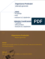 PROIECT Organizara productiei