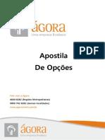 Apostila_ Opções_2012