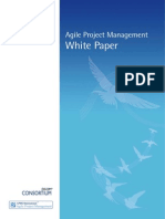 Agile PM White Paper - Feb 11
