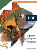 Honey Superfish Plant Scissors Wave 25cm Yet Not Vulgar Pet Supplies