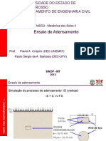 fot_401904_adensamento_ensaio_ppsx.ppsx