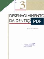 03 - DESENVOLVIMENTO DA DENTIÇÃO