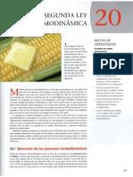 fc3adsicauniversitaria_capitulo_20.pdf
