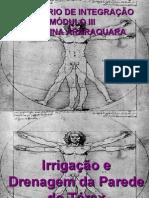 Irrigação e Drenagem Torácica_Seminário de Integração
