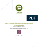 BosMex_Reporte