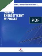 4.1.10 Sektor Energetyczny w Polsce. Profil Sektorowy PL