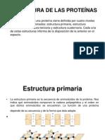 ESTRUCTURA DE LAS PROTEÍNAS.ppt