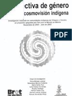 Méndez Lorenzo, Elvira et al - Perspectiva de género desde la cosmovisión indígena