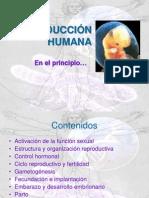 Reproducción humana.ppt