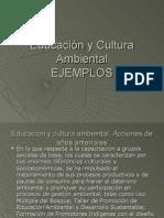 Educación y Cultura Ambiental expocision ejemplo