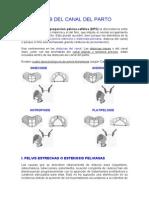 DISTOCIAS DEL CANAL DEL PARTO.doc