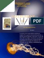 Instrumental Endodontico